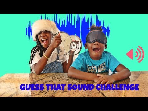 Guess That Sound Challenge