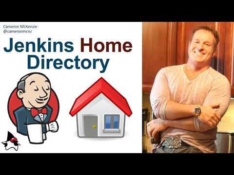 Jenkins Home Directory: What is JENKINS_HOME and how do you set the environment variable