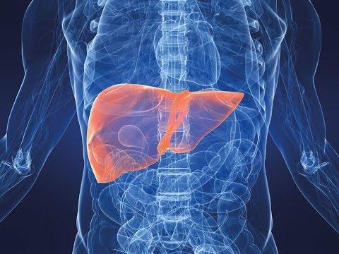 Если удален желчный пузырь - лечение болезней желудочно