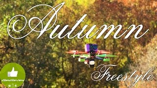 ✔ Racing Drone Realacc X210, 2550kv + 30A, Lux FC Autumn Freestyle 2016!