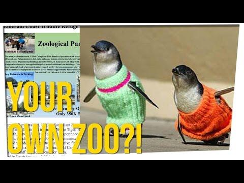 Entire Zoo for Sale on Craigslist! ft. Steve Greene & Nikki Limo