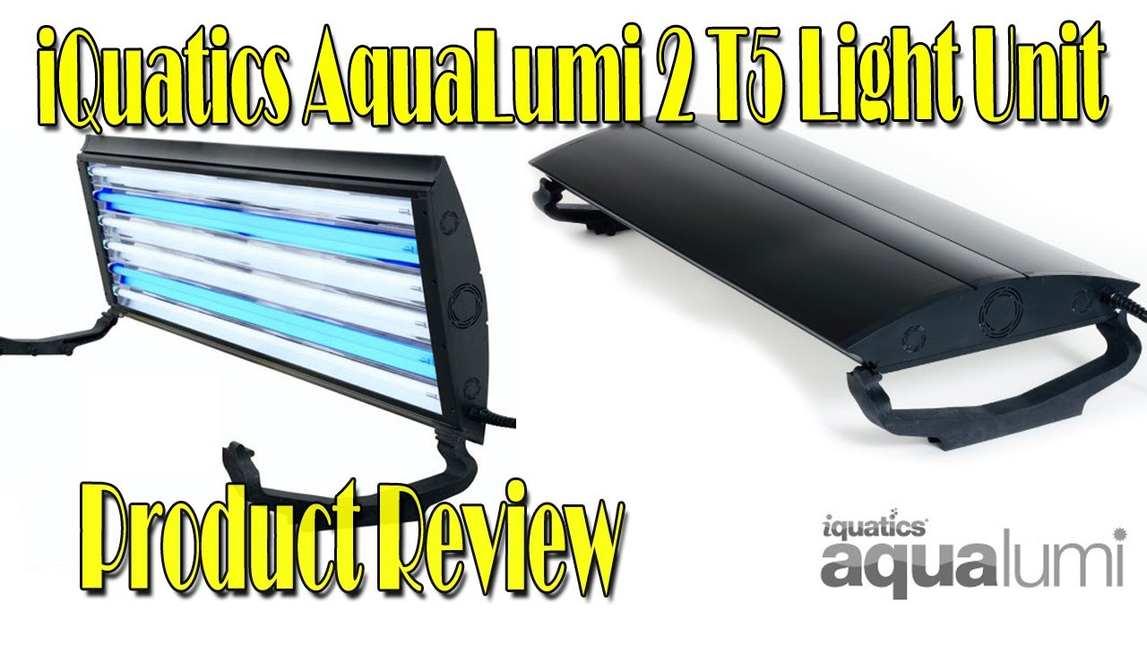 iQuatics AquaLumi 2 T5 Light Unit Review  sc 1 st  YouTube & iQuatics AquaLumi 2 T5 Light Unit Review - YouTube azcodes.com
