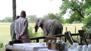 Shinde - Ker & Downey Botswana