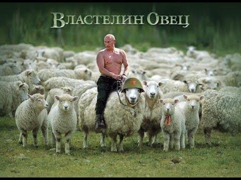 Как собирали митинг Путина в Лужниках.