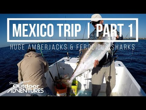 Big Amberjacks With JLC Fishing | Fishing Playa Del Carmen, Mexico | Part 1