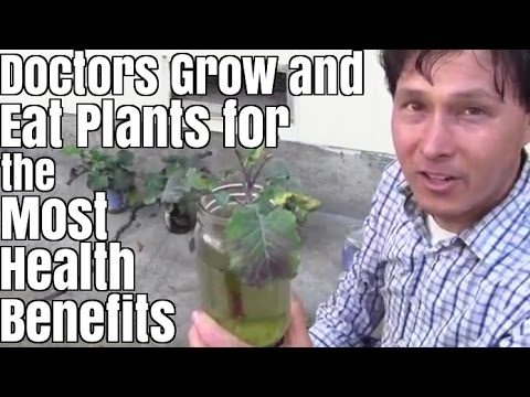 Doctors Grow and Eat Plants for the Most Health Benefits