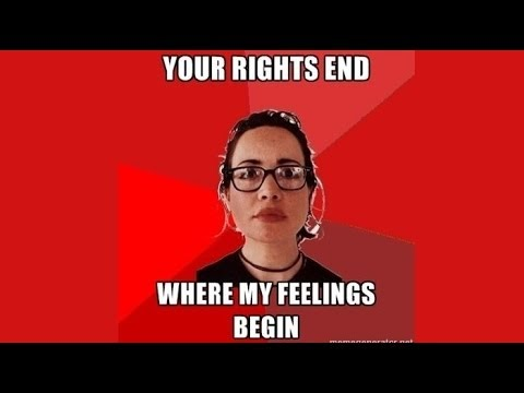 Image result for liberal social engineering
