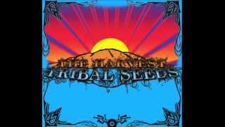 Tribal Seeds - Libertad
