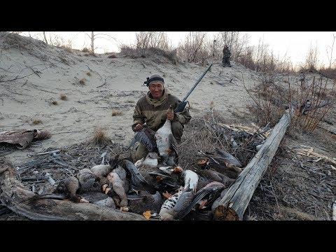 Охота на гуся в Якутии 1 часть! Yakutia