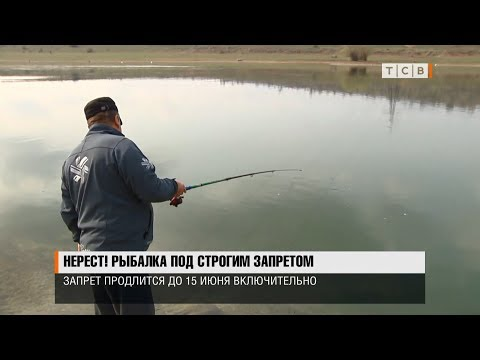 Нерест! Рыбалка под строгим запретом