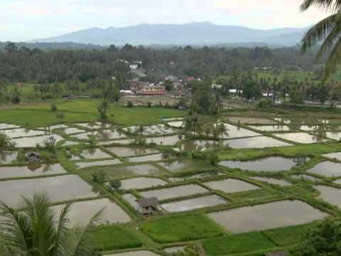 Rudy Wairata - Rayuan Pulau Kelapa