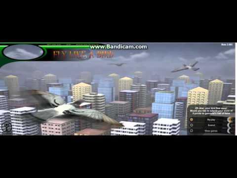 Как делать большого птенца в игре летай как птица 3