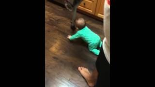 Gambar cover Baby follows vacuum