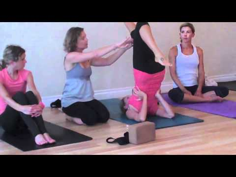 plow to shoulder stand yoga demonstration  youtube