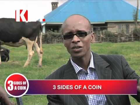 3 Sides of a Coin Dairy Farming