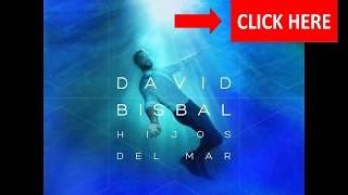 David Bisbal - Lo Tenga O No - Versión Acústica David Bisbal