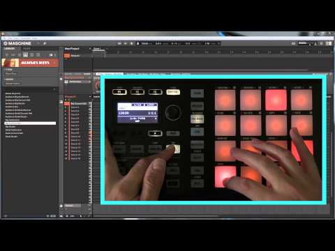 Maschine Mikro MkII – Scales, Chords & Arpeggios