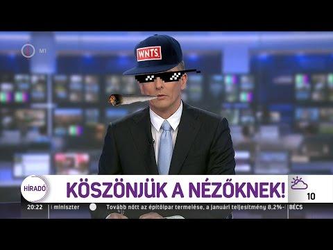 WNTS - Köszmédia (hivatalos klip) mp3 download