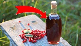 видео Лечебные свойства боярышника – применение ягод (плодов)