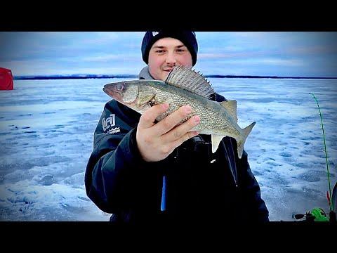 ICE FISHING FOR WALLEYE!! (Oneida Lake)
