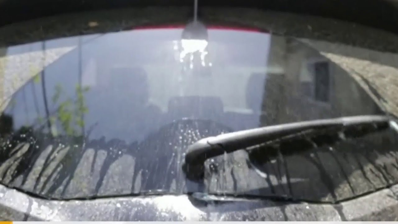 Leaving pollen on your car can cause permanent paint damage