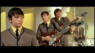 The Animals - House of the Rising Sun (1964) HQ/Widescreen ♫♥ 57 YEARS AGO