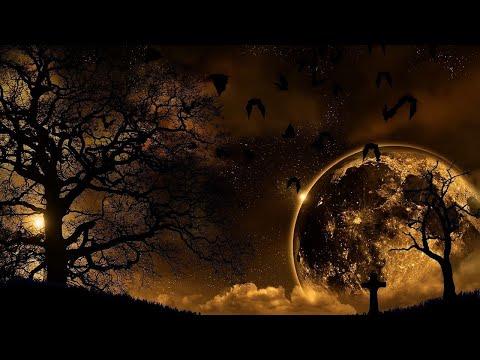 🔴Deep Relaxing Sleep Music with Nature HD Video.Sleeping Music Stress Relief Meditation Music 2021