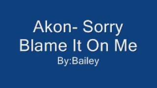 Akon- Sorry Put The Blame On Me with lyrics