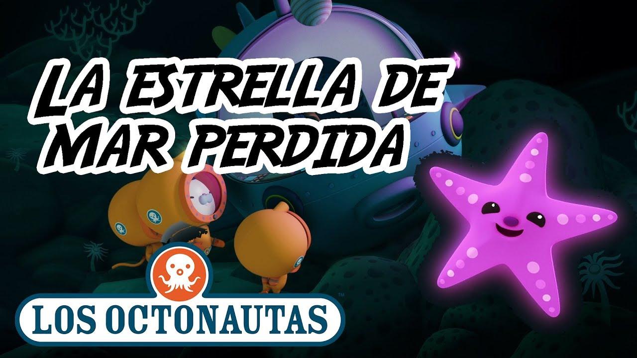 Los Octonautas Oficial Español | La estrella de mar perdida | Episodio 32