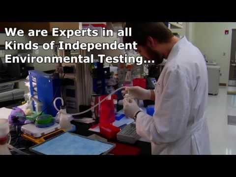 mold-testing-fremont