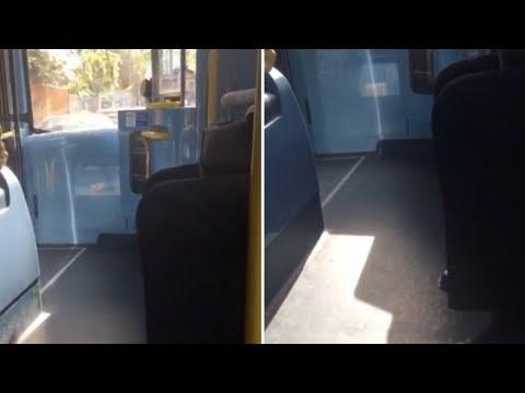 Opera Singing Bus Driver Serenades Passengers