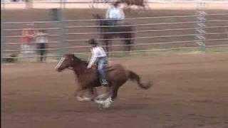 Mile Hi Barrel Horse Assoc 5/29/2010