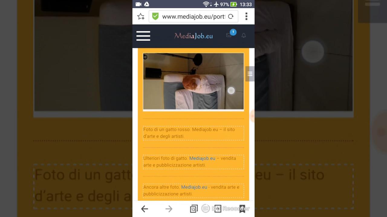 Modificare progetto pubblicato su Mediajob eu su smartphone