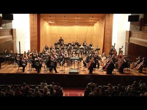 The Concert in Belgrade: Holberg Suite