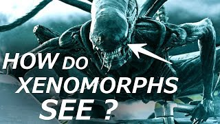 How Can Xenomorphs See ? Sensory Organs Explained