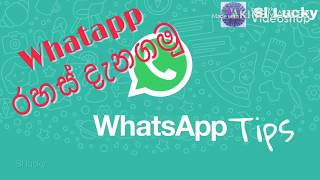 WhatApp tips - whatapp