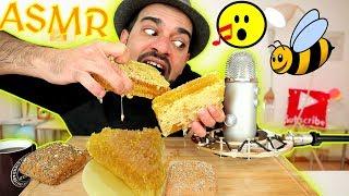 اصوات الاكل الحقيقية - خلية نحل مليئة بالعسل الطبيعي الخالص ! ASMR Raw Honeycomb Eating Sounds