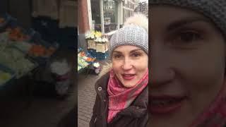 Нидерланды Гаага воспоминания весны ... для истории... «Путешествия по миру» ведь))
