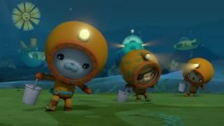 Octonauts Season 3 The Sea Pigs