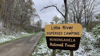 Free Camping - Liтtle River Dispersed, Monongahela NF, WV