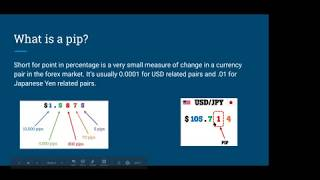 FOREX 101 FOR BEGINNERS