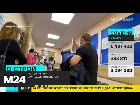 Терапевты и педиатры начнут прием граждан в Подмосковье с 15 июня - Москва 24