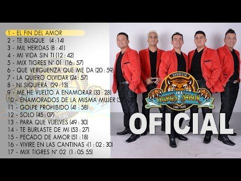 Los Tigres del Sabor Otra Vez (Producción Completa) Oficial 2017 HD