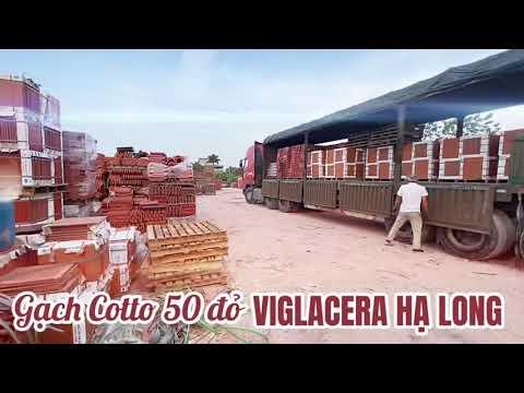 Gạch 50 đỏ Cotto Viglacera Hạ Long (Giếng Đáy) Tại Kho Hàng Công Ty TNHH Đức Thắng