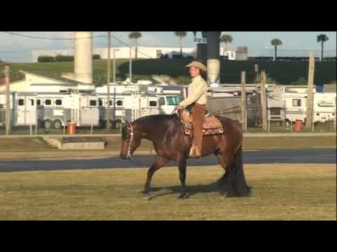 Good Cowboy Margarita-Florida 2009