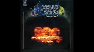 VENUS GANG   Love To Fly   EPIC RECORDS   1978