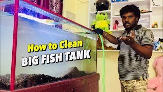How to Clean your Big Size Fish Tank | Tamil |