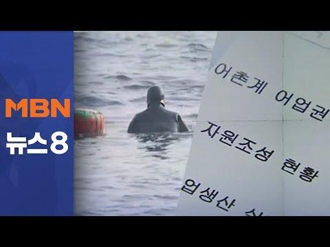 PC방 사장이 해녀?…보상 노린 '가짜 해녀' [뉴스8]