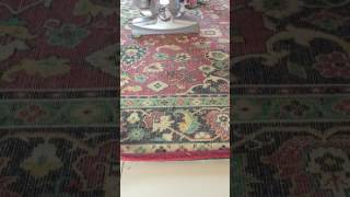 видео Ковер перед диваном