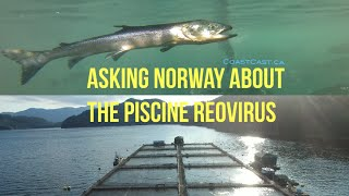 asking norway about prv